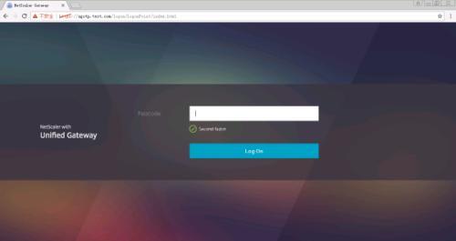 NetScaler OTP双因子身份认证登录演示